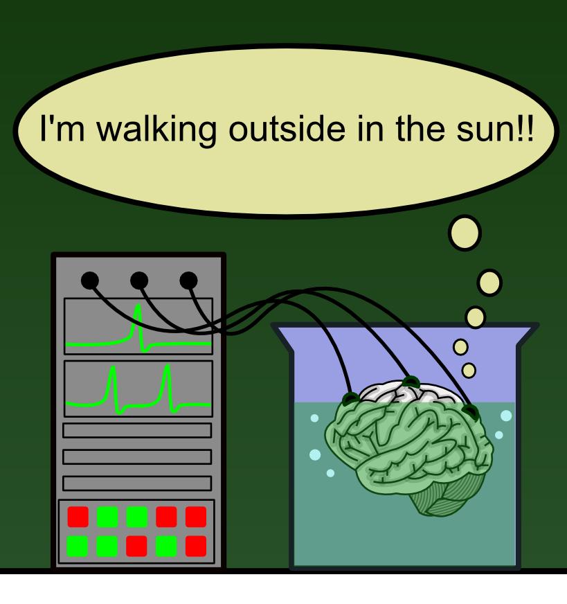 Brain_in_a_vat_(en)