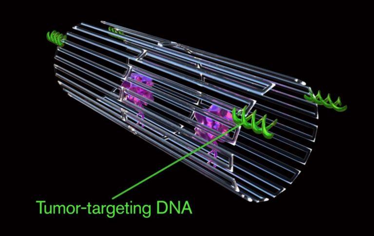 Nanobots para eliminar el cancer